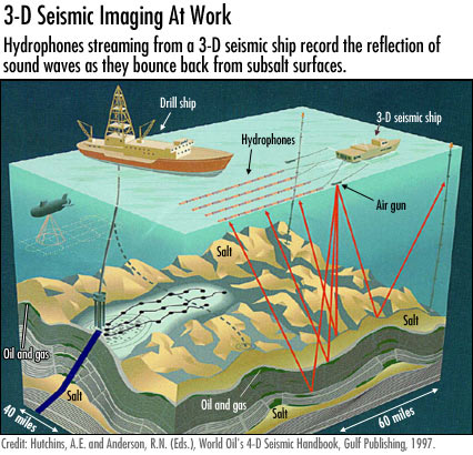 3 D seismic imaging at work - exploration for oil