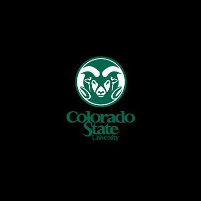 Colorado state university application essay prompt
