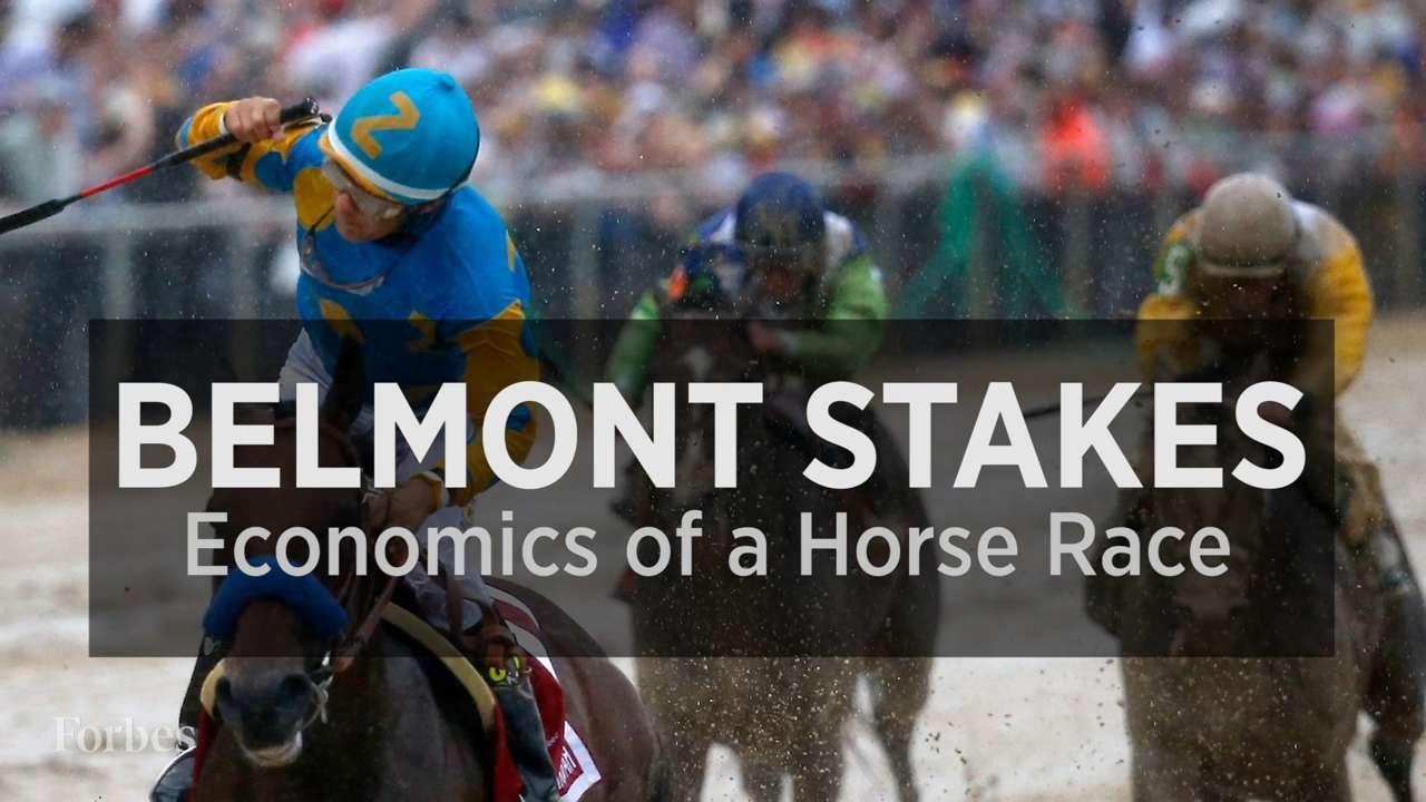 the economics of race in the us Economic impact of the united states horse  the following statistics are from the american horse council foundation's 2017  economics.