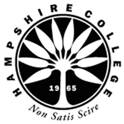 hampshire college essay