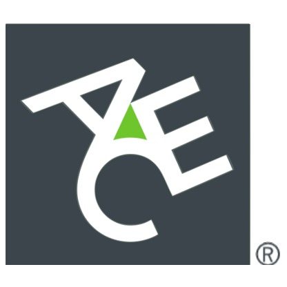 ACE on the Forbes Global 2000 List